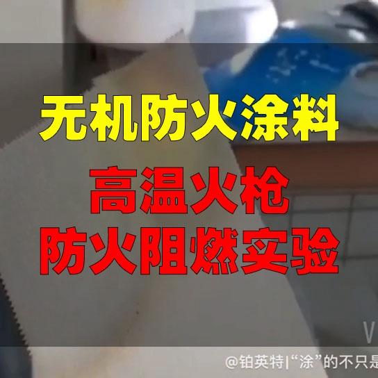 无机涂料耐火燃烧测试视频