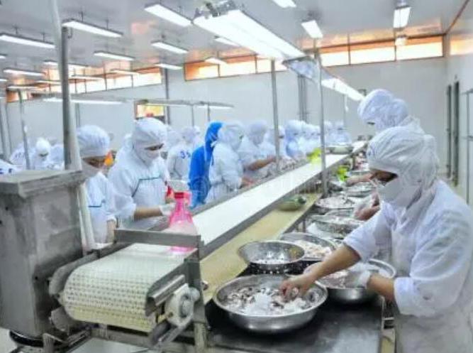 福建厦门海鲜加工厂——铂英特无机涂料工程